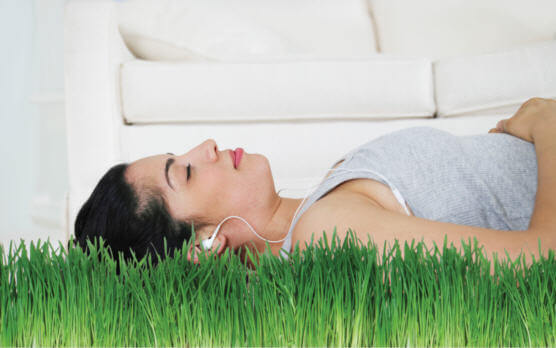 Clean Your Home Naturally With These 5 Products